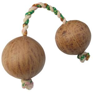 アフリカの楽器パチカ(アサラト)